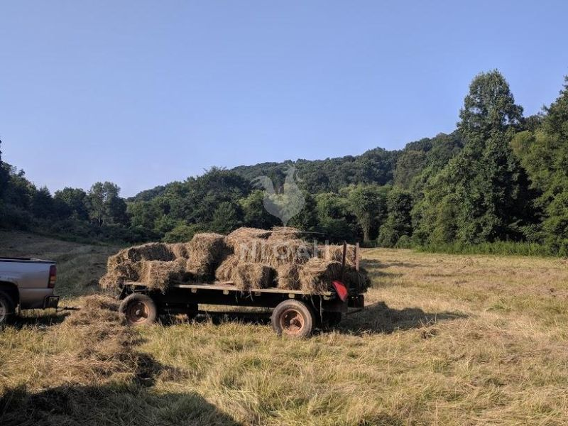 hay bales loaded up it a trailer