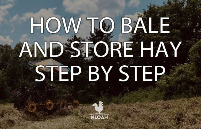 how to bale hay featured