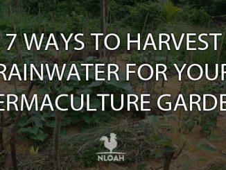 rainwater harvesting cover