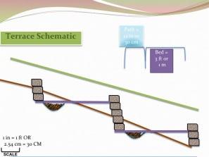 terrace schematic
