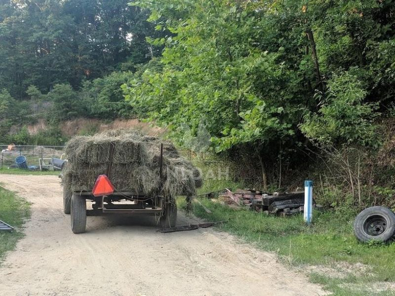 transporting hay to the barn with a bandwagon