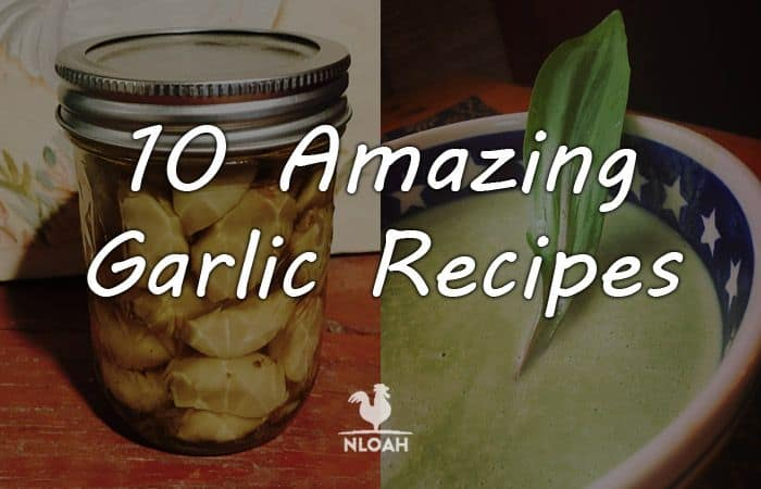 garlic recipes main