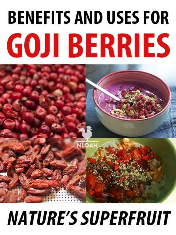 goji berries pinterest