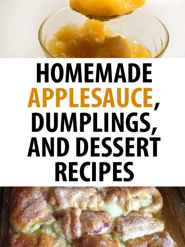 homemade applesauce pinterest