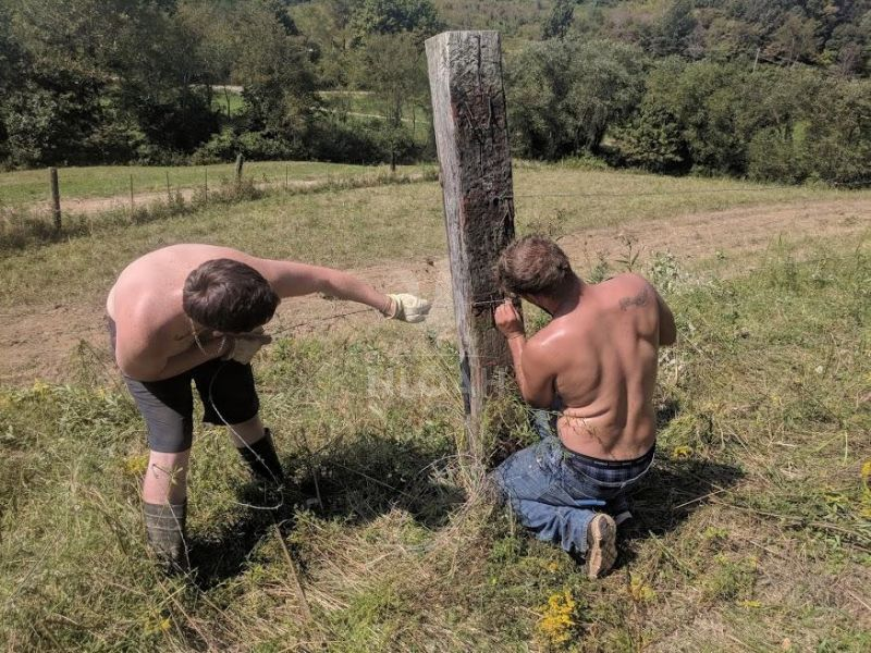 two men mending a fence