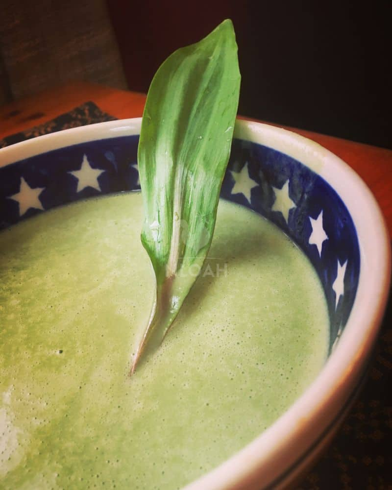wild leek and garlic soup