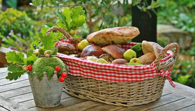 autumn foraging basket