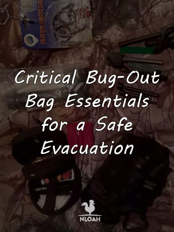 bug out bag essentials pinterest
