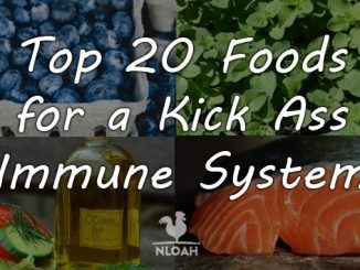 foods for immune system cover