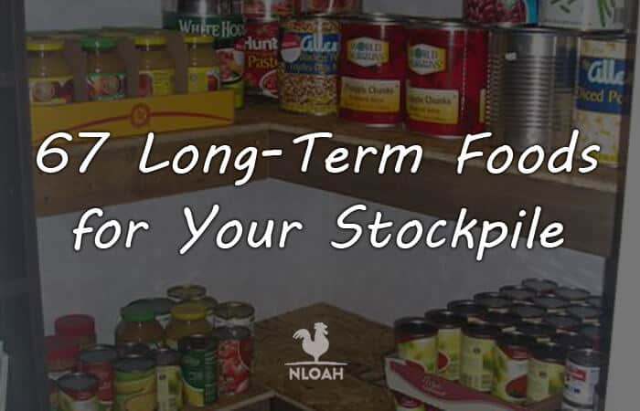long term food logo