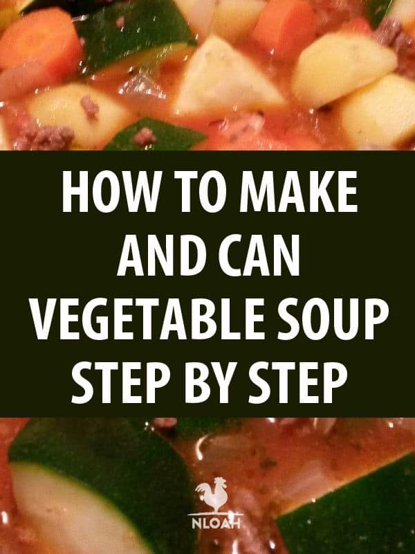 vegetable soup pinterest
