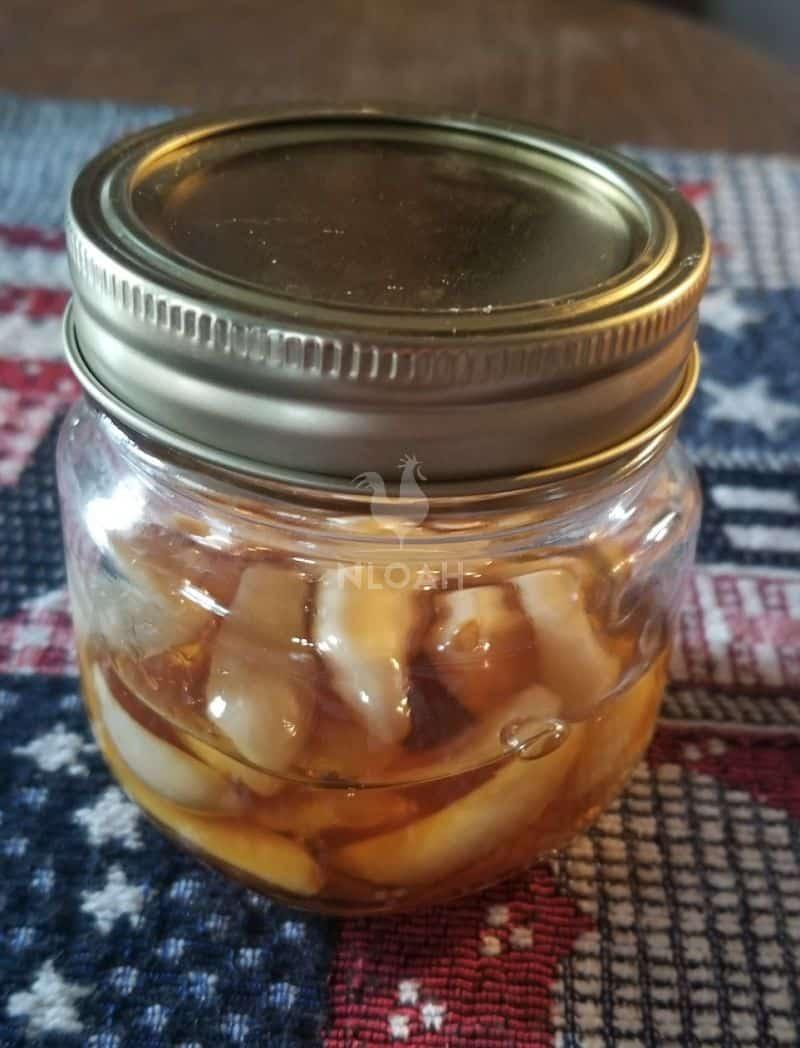 garlic-infused honey