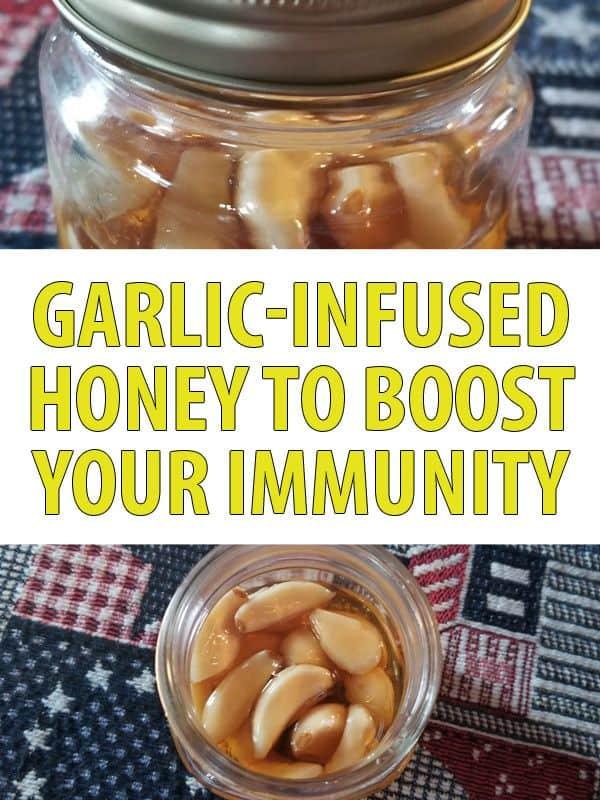 garlic infused honey pinterest
