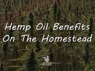hemp oil logo