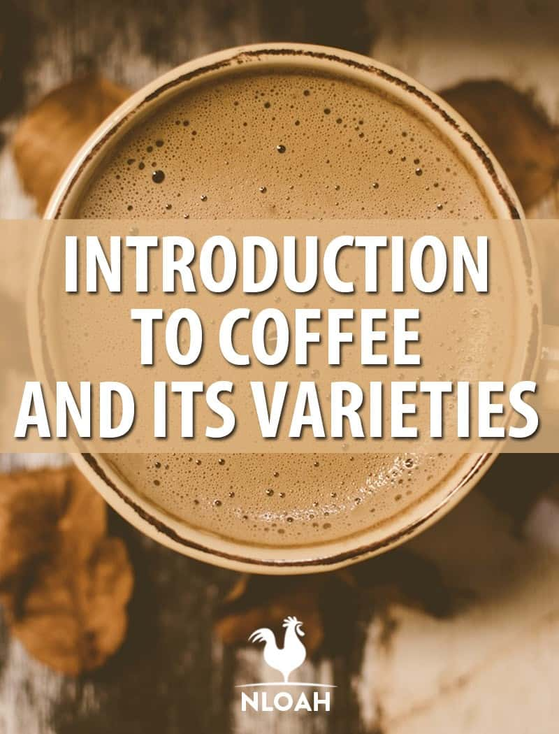 coffee introduction Pinterest image