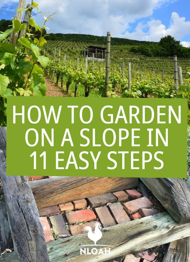 gardening on a slope pin