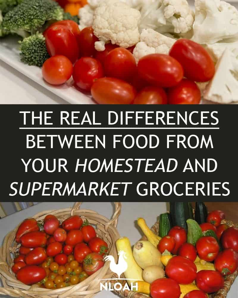 supermarket vs homestead food pinterest