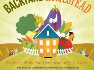 the backyard homestead ebook cover