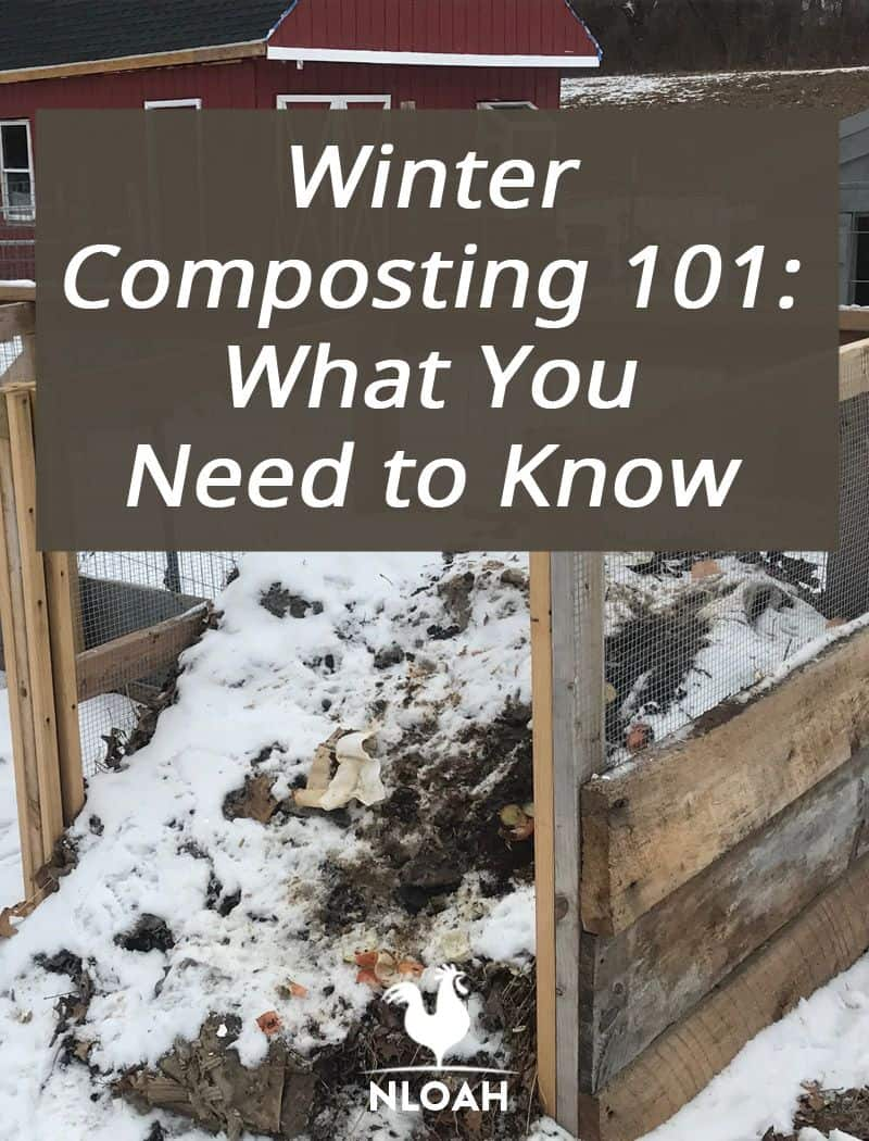 winter composting pinterest
