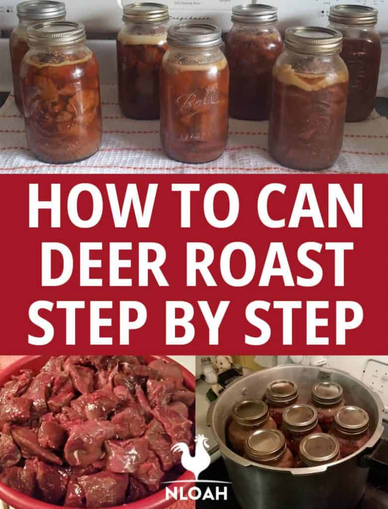 how to can deer roast pinterest