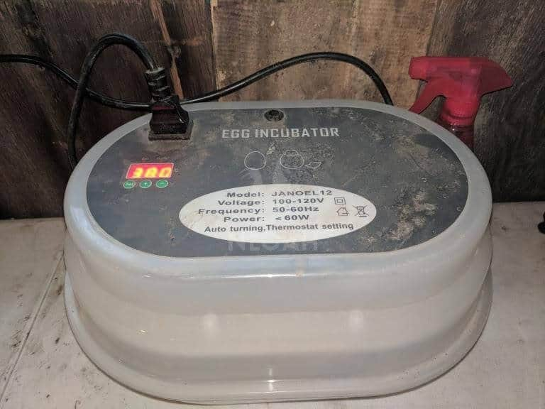 egg incubator closed