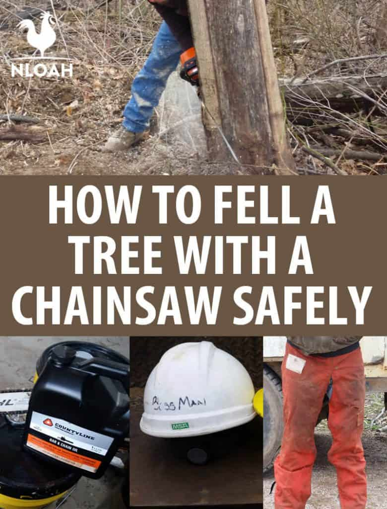 felling a tree chainsaw pin