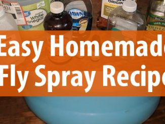 fly spray recipe featured