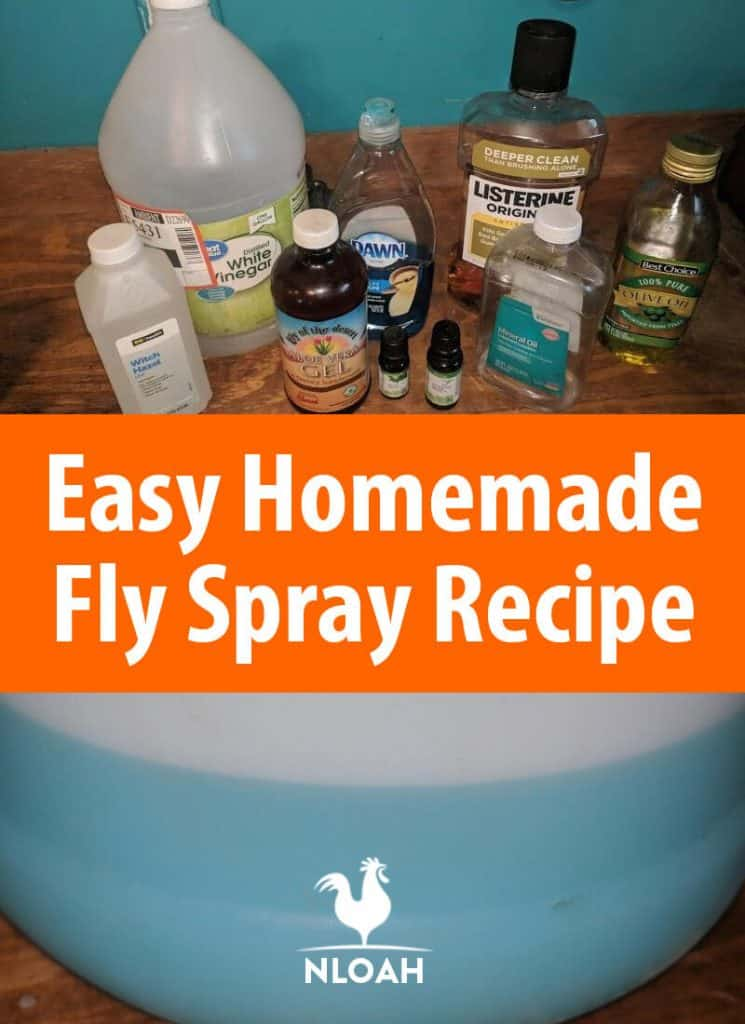 fly spray recipe pinterest