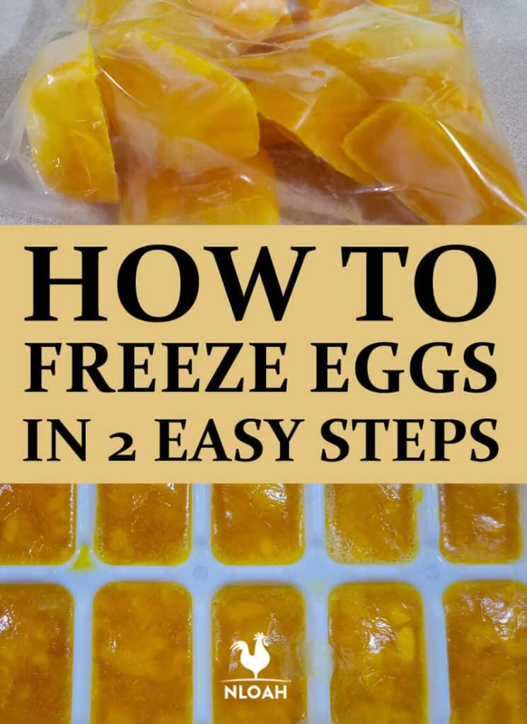 freezing eggs pinterest