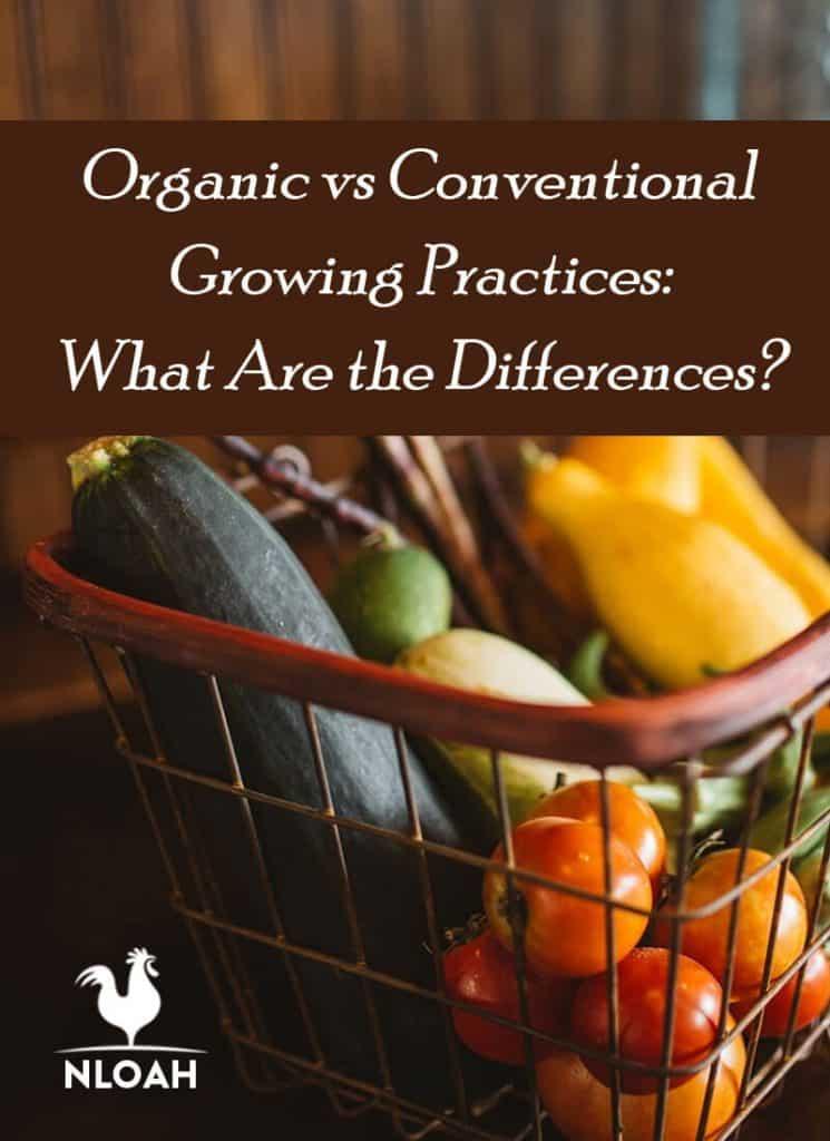 organic conventional gardening pinterest
