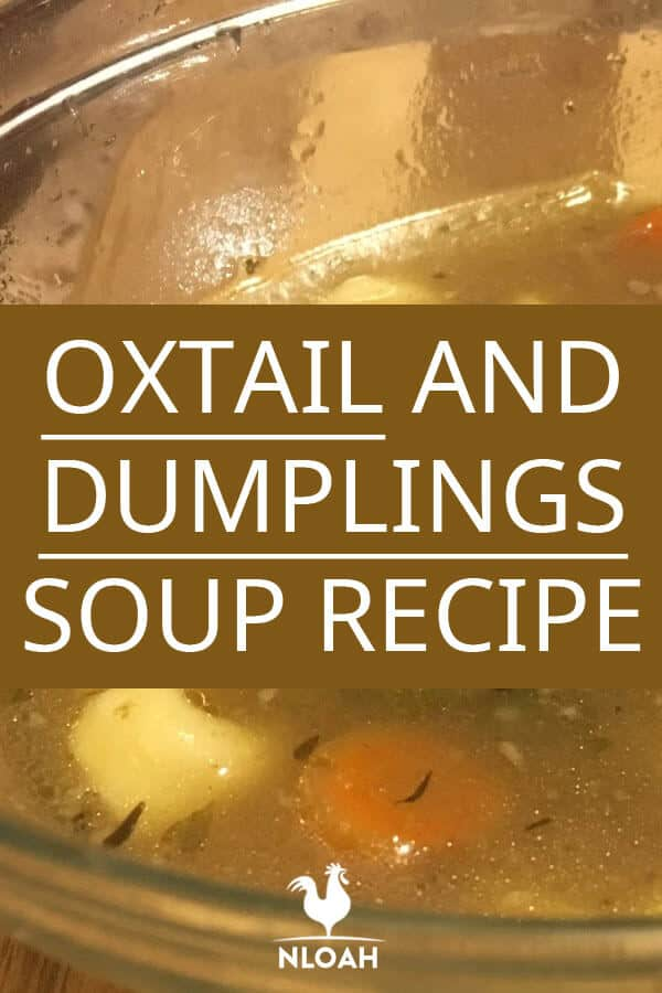 oxtail dumplings soup pinterest