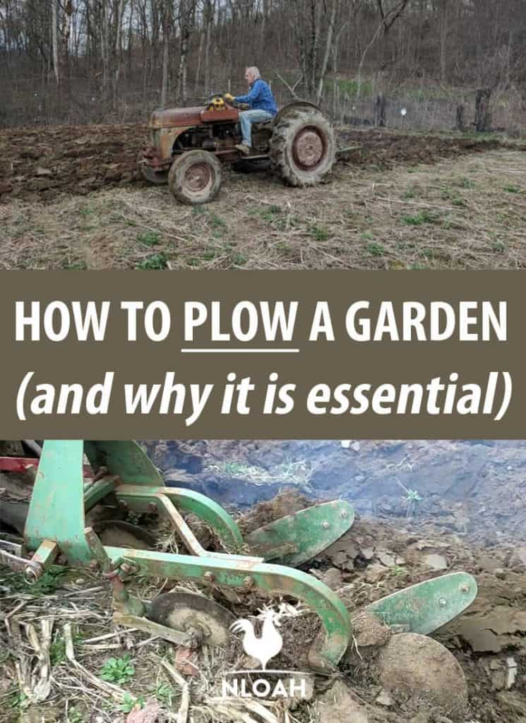 How To Plow A Garden (and Why It Is Essential) • New Life On A