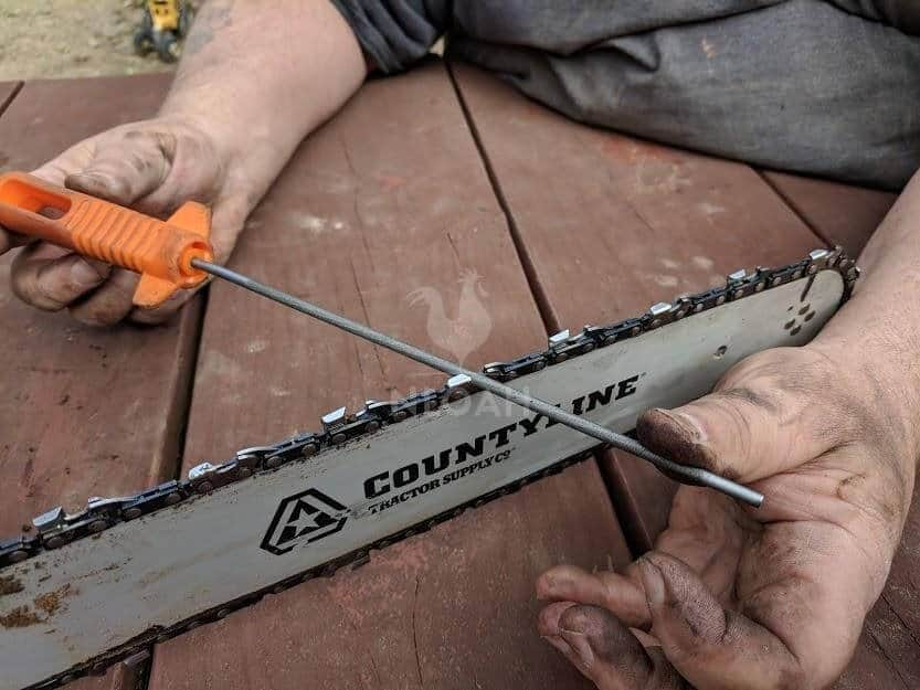 sharpening a chainsaw