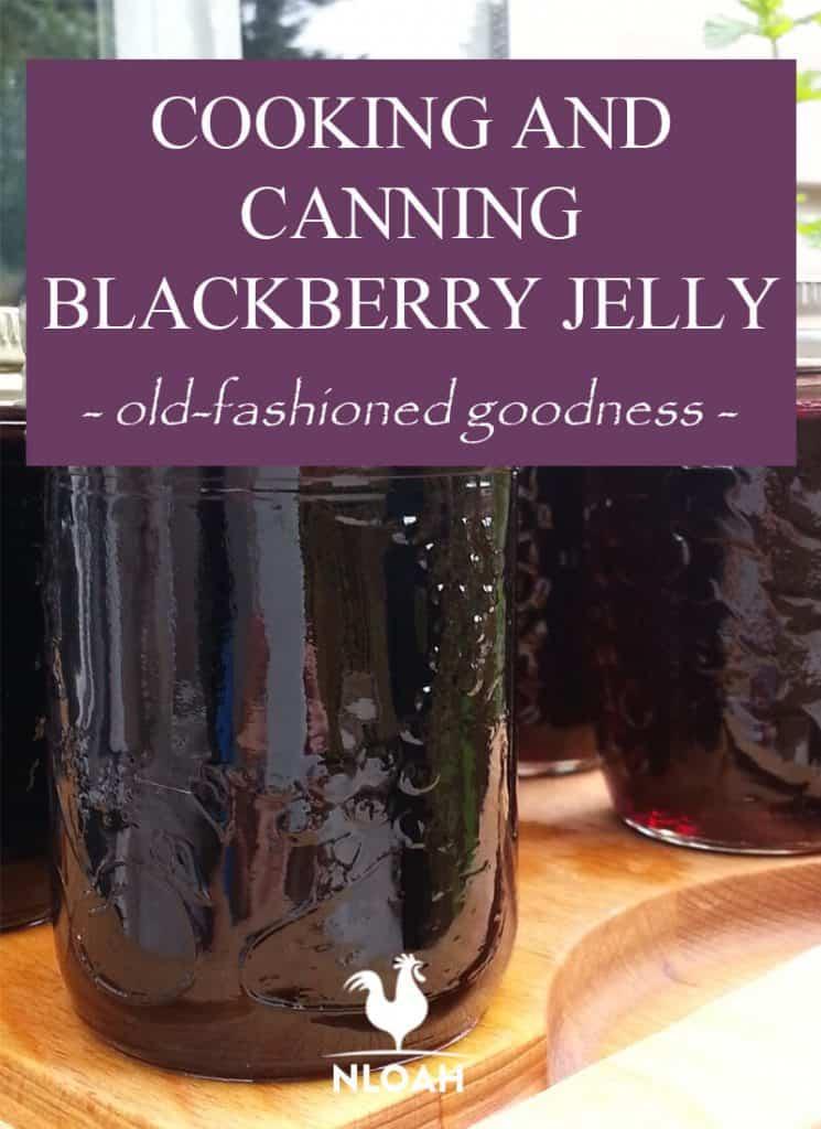 canning blackberry jelly pinterest