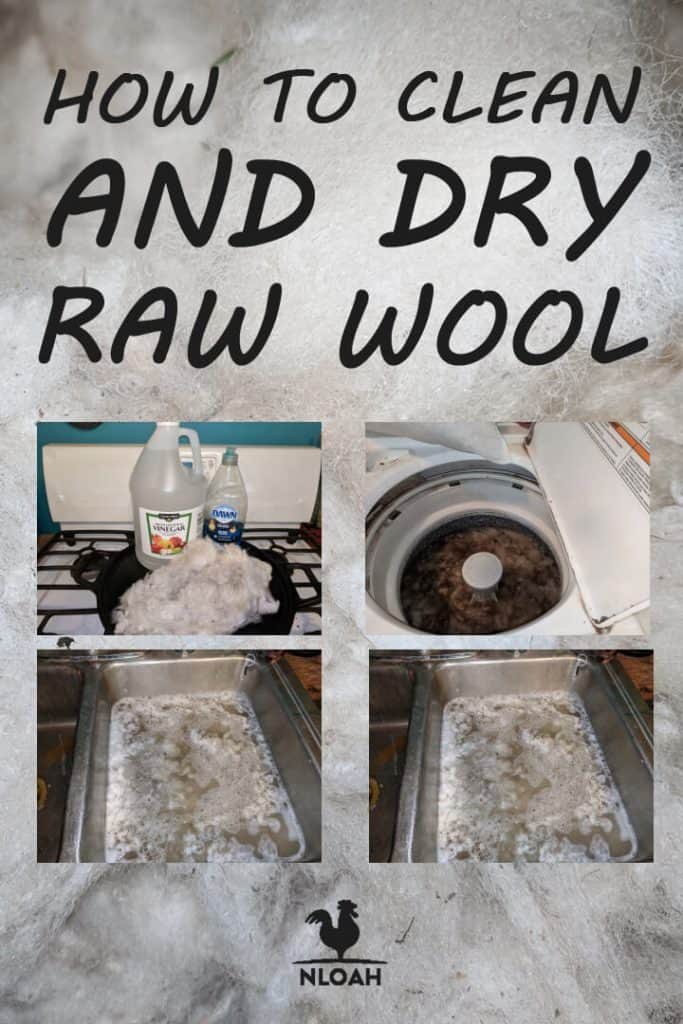 cleaning_raw_wool_pinterest