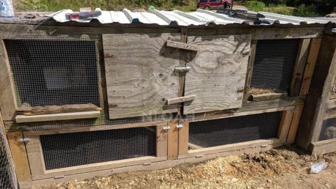 Cheap Diy Chicken Coop Turn A Rabbit Hutch Into A Hen