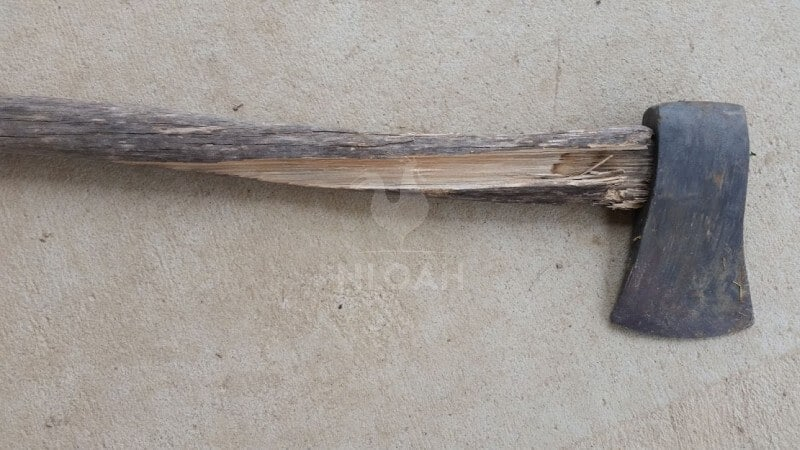 axe with an old handle