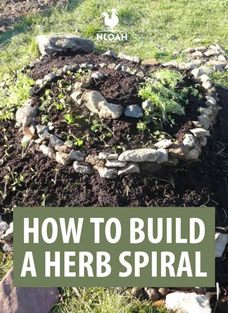 building  herb spiral pinterest