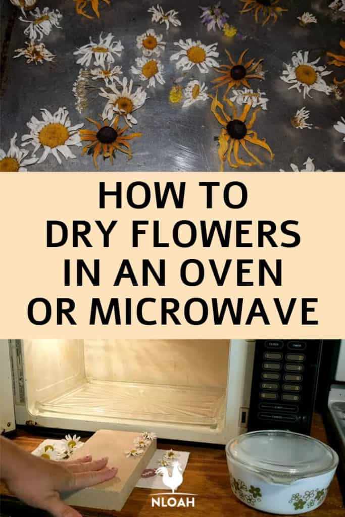 drying flowers oven microwave pinterest