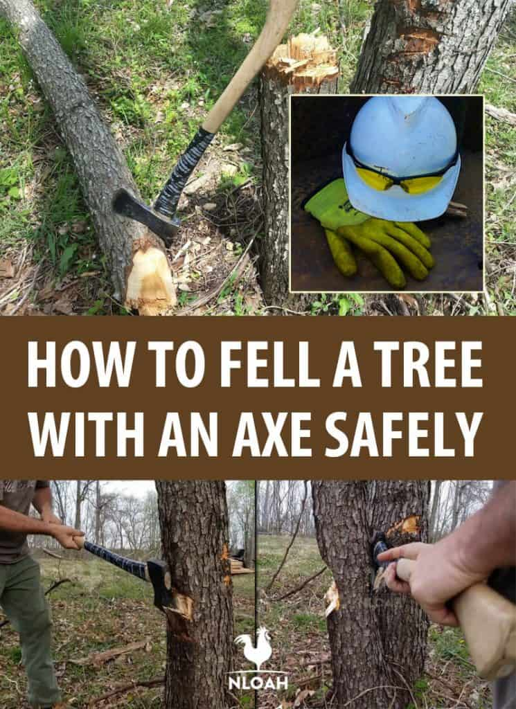 tree felling with axe pinterest