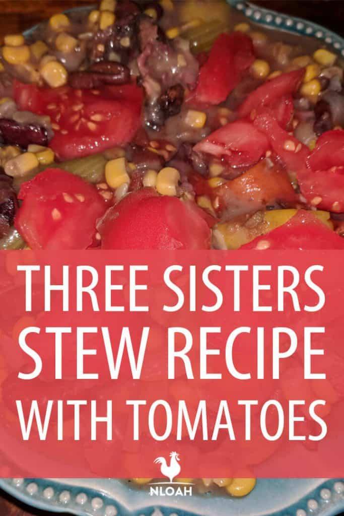 three sisters stew pinterest
