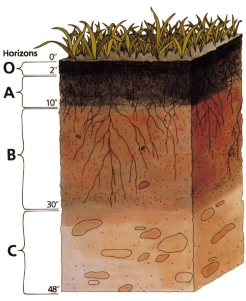 soil profile diagram