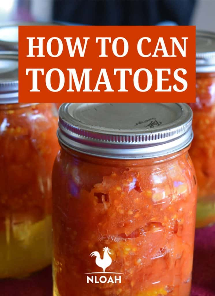 canning tomatoes pinterest
