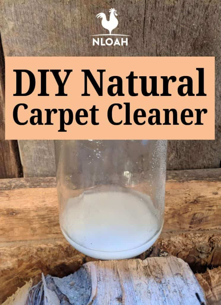 carpet cleaner pin