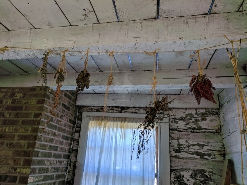 hang-drying flowers