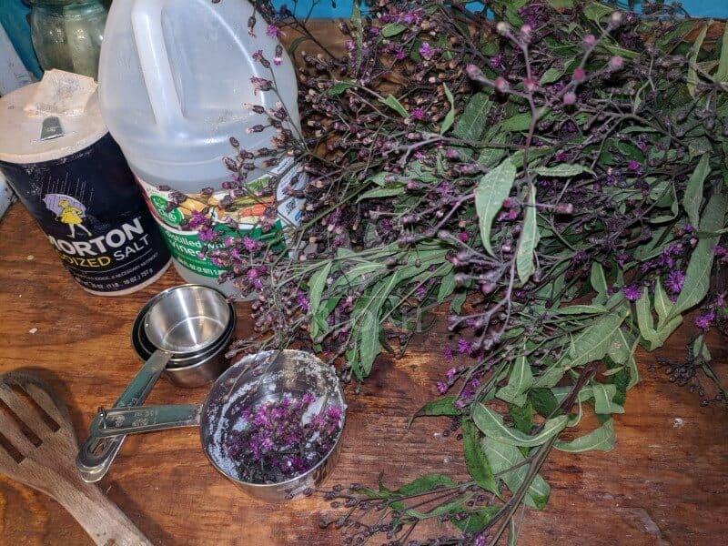 ironweed salt and vinegar