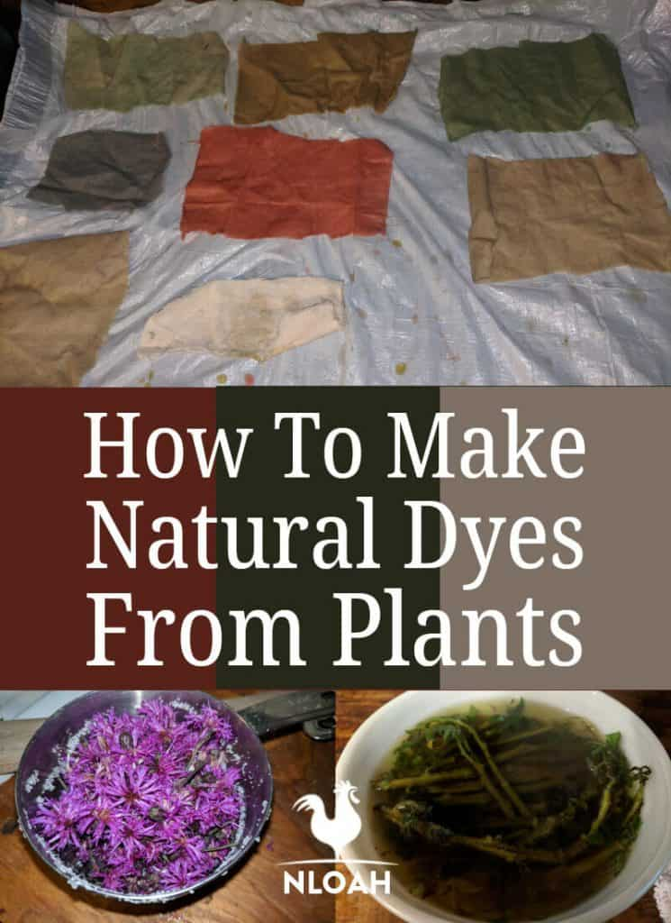 making natural dyes pinterest image