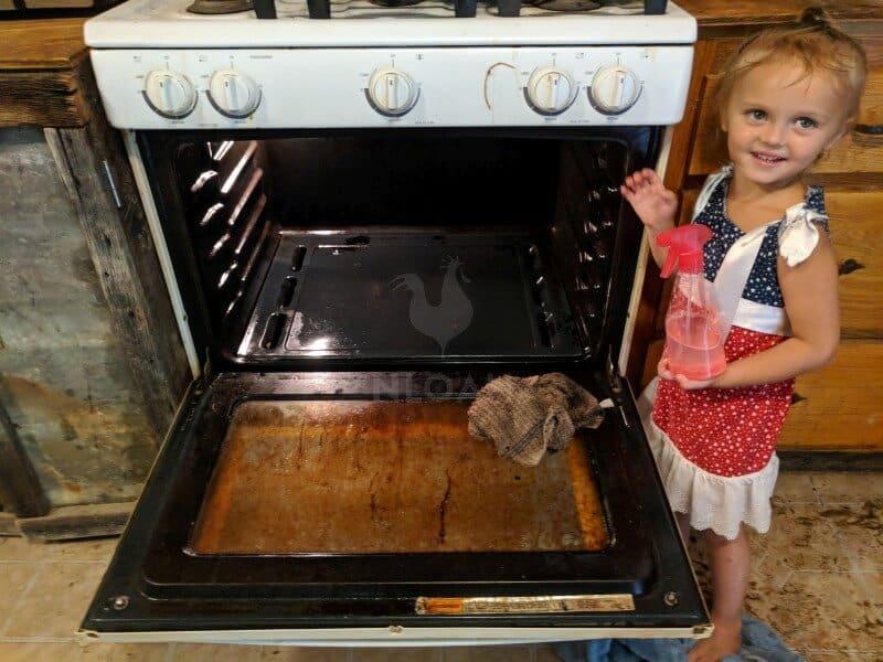 oven cleaner end result