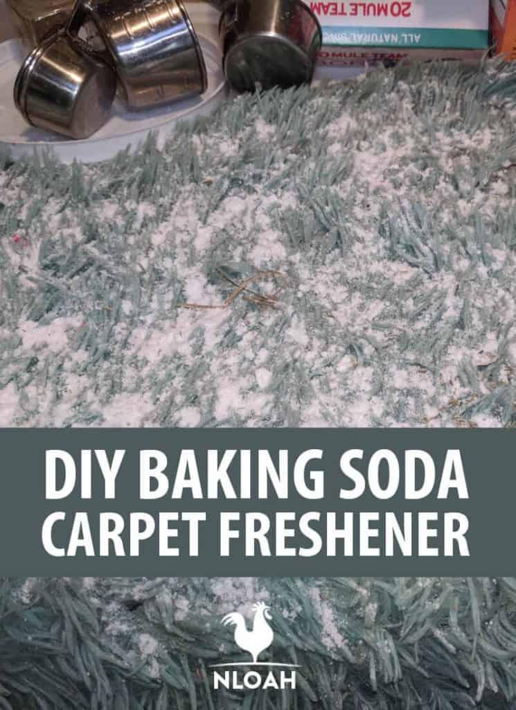 baking soda carpet freshener pinterest