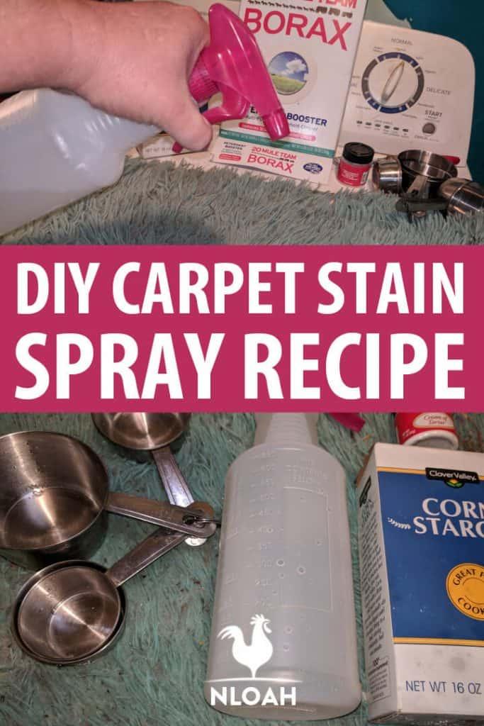 DIY carpet stain recipe pin